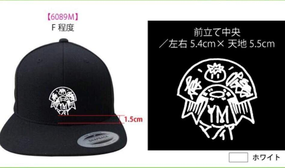 Adult Baseball Cap Hat NEW RARE got chappy?
